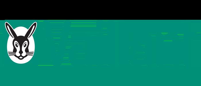 Vaillant Green Logo